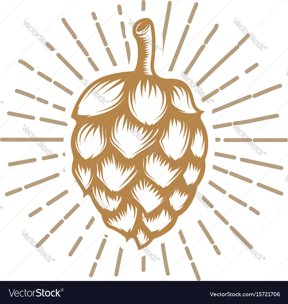 Hop in golden style isolated on white background vector image