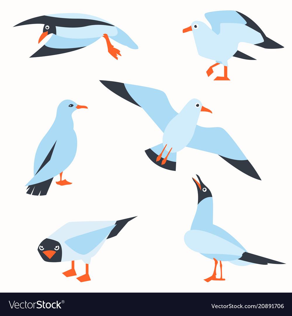 Sea gull a beautiful bird cute bird in cartoon