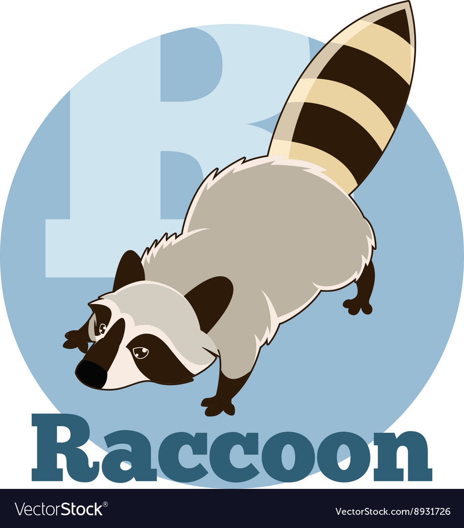 ABC Cartoon Raccoon2