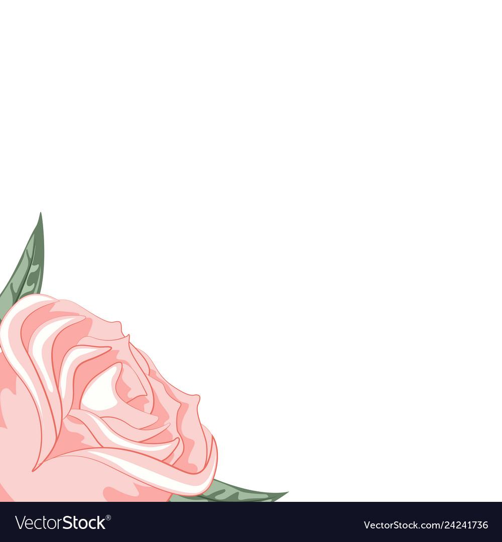 Beautiful rose frame for dedication