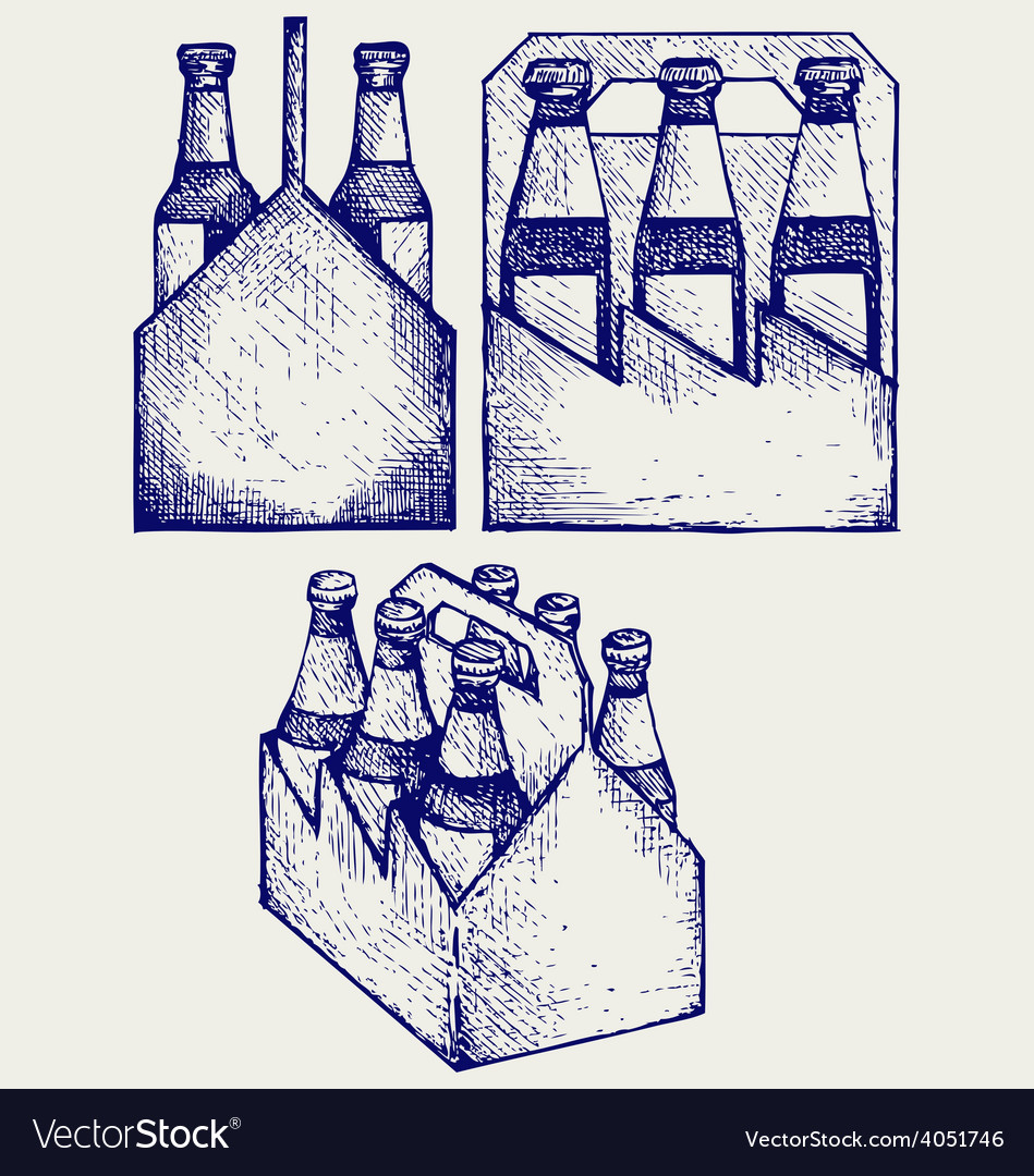 Beer Six Pack In Three Boxes Royalty Free Vector Image