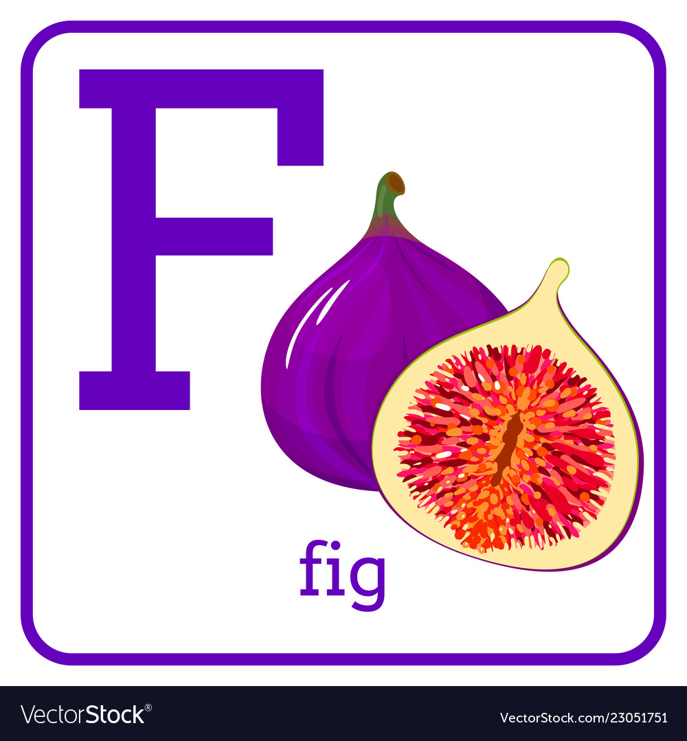 An alphabet with cute fruits letter f fig