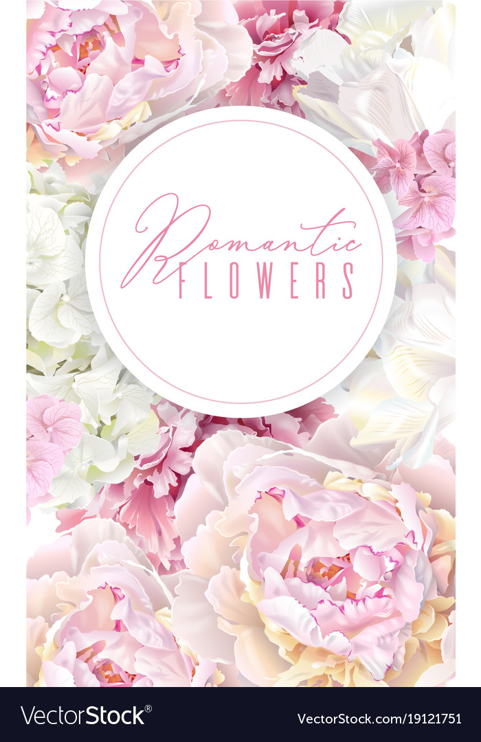 Peony pink banner