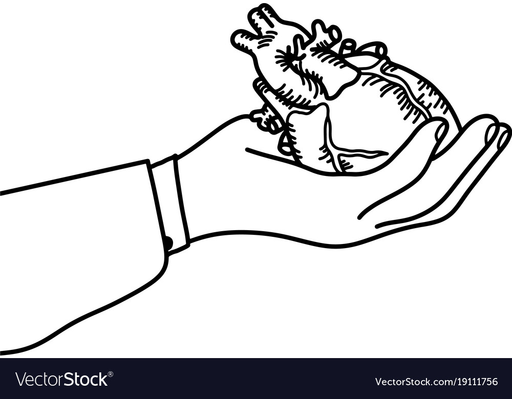 Hand holding a human heart outline