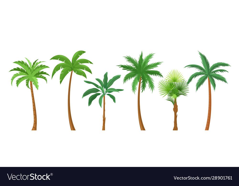 Palm trees flat color set