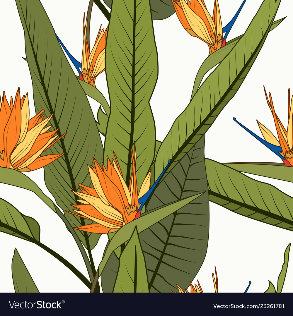 Bright cheerful tropical seamless pattern exotic