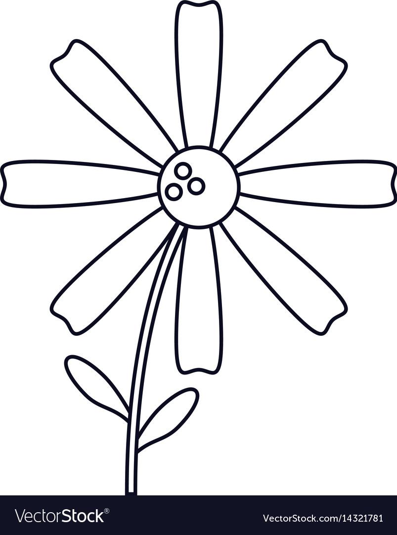 Daisy flower decoration line