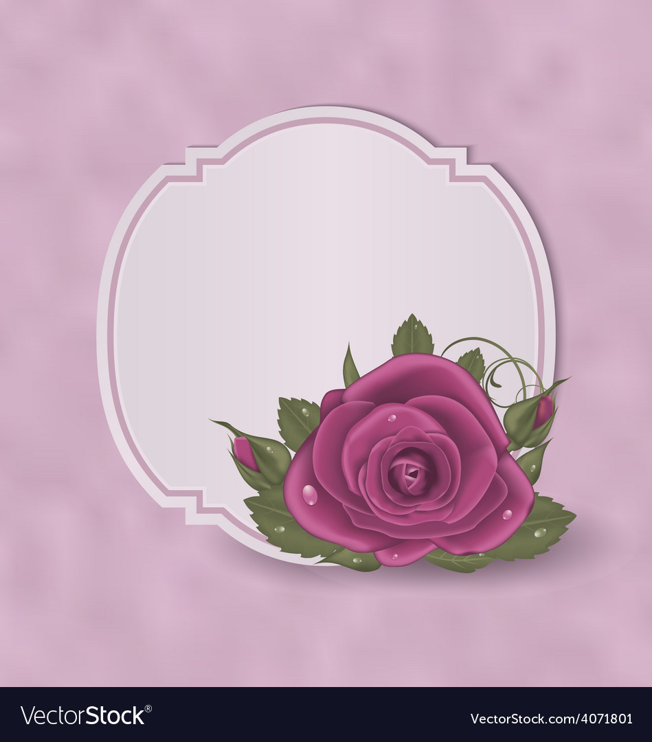 Vintage card with pink roses vector image