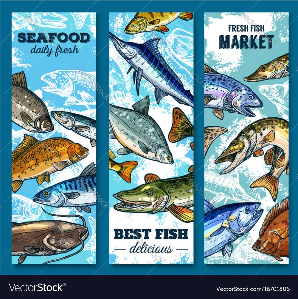 Fresh Seafood And Fish Market Sketch Banner Set Vector Image