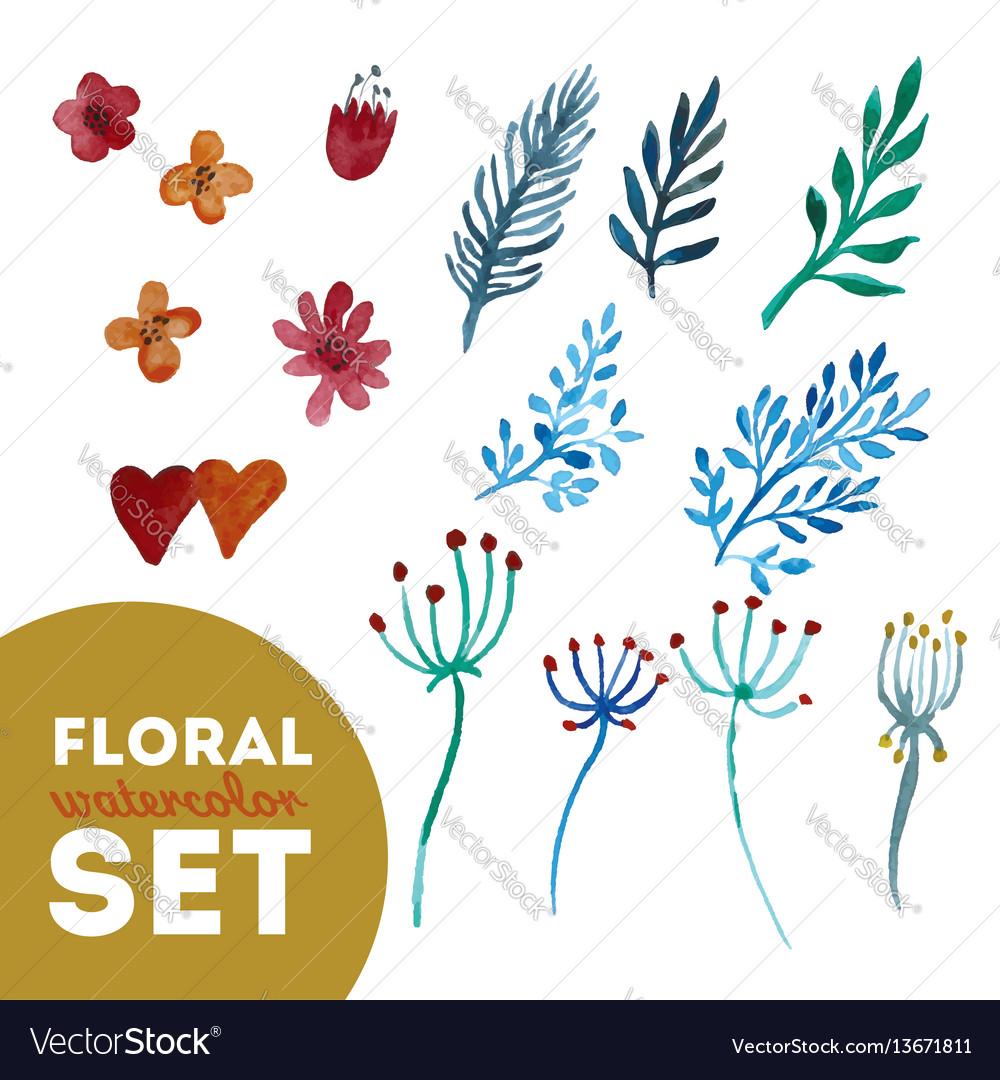 Set floral watercolor