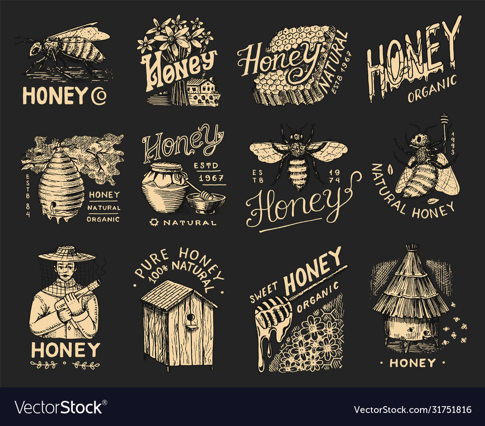 Honey and bees set beekeeper man and honeycombs