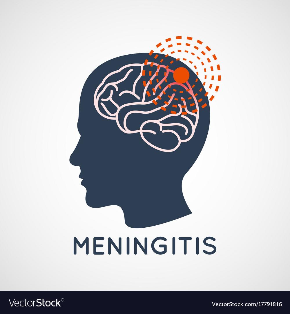 Meningitis logo icon design vector image