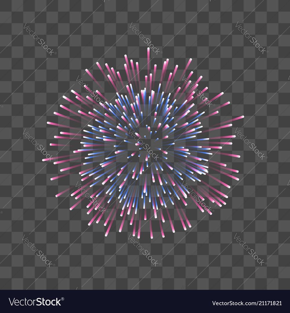 Beautiful firework couple romantic salute
