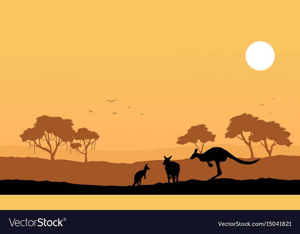 Collection kangaroo on the hill scenery