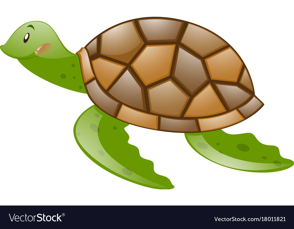 Cute Turtle With Brown Shell Royalty Free Vector Image
