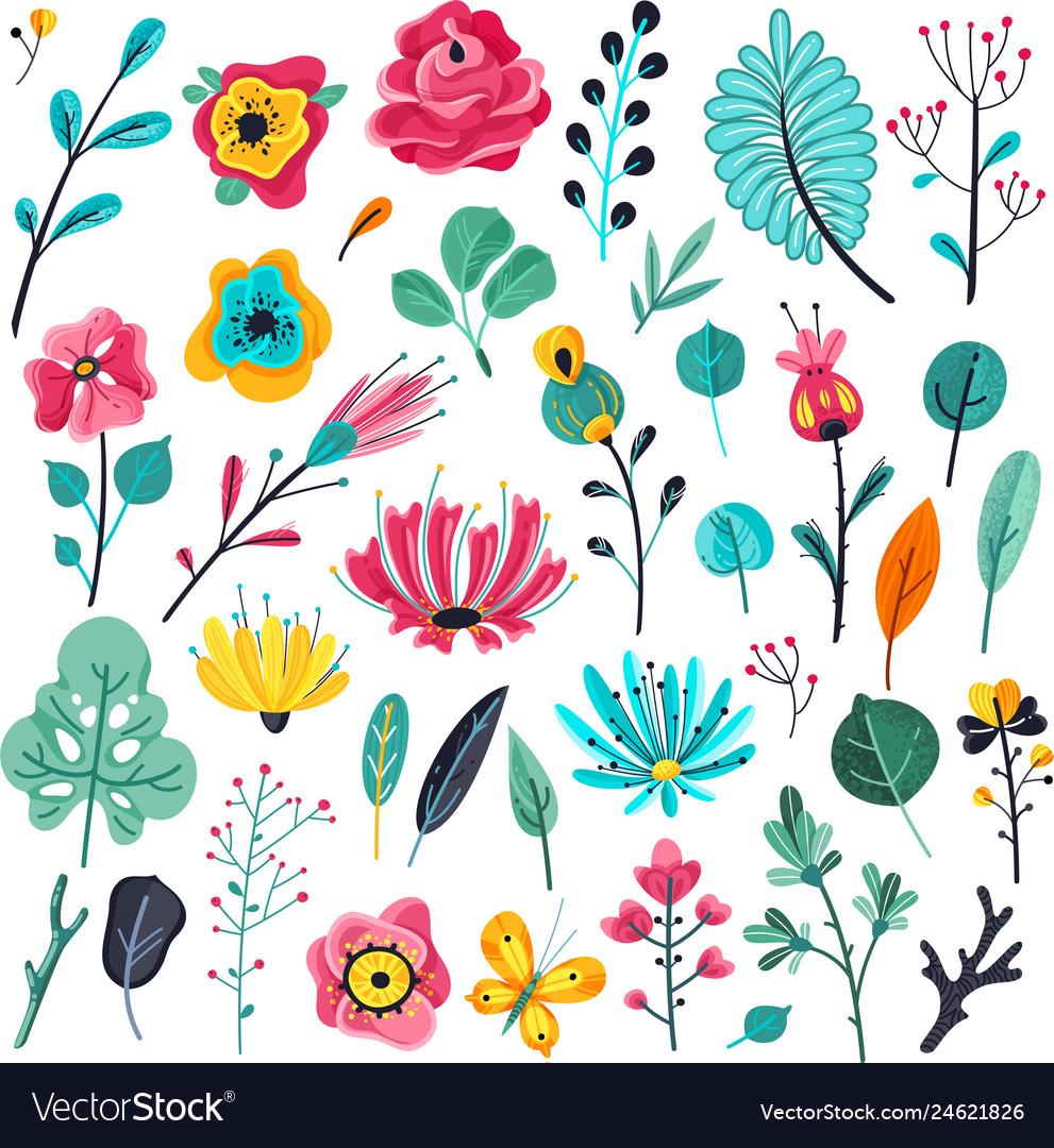 Summer flat flowers floral garden flowering