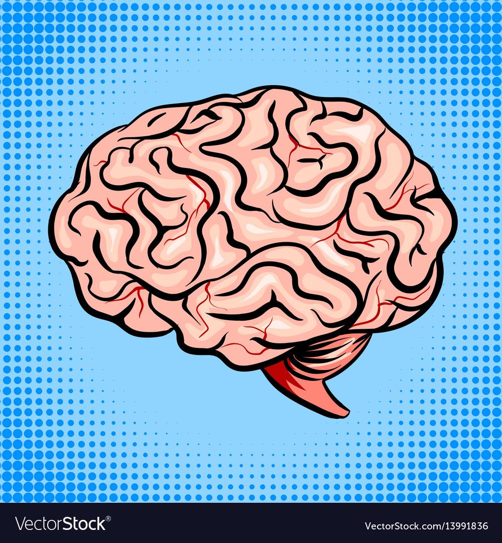Human brain pop art style vector image