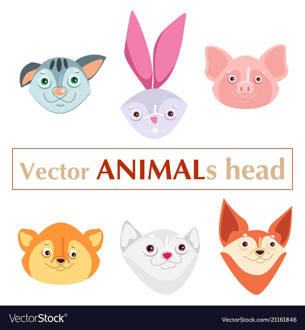 Educational flashcard animals heads