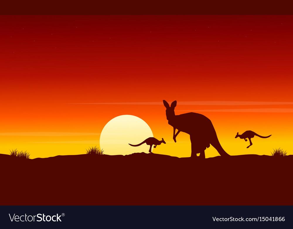 Silhouette kangaroo at sunrise landscape