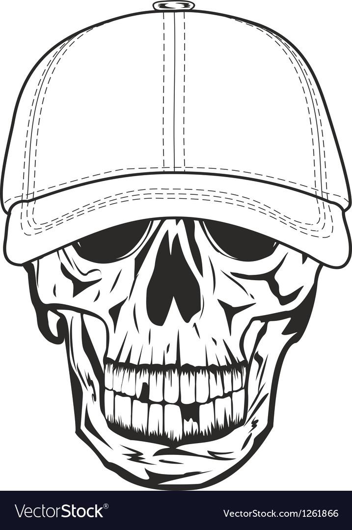 Skull in baseball cap vector image