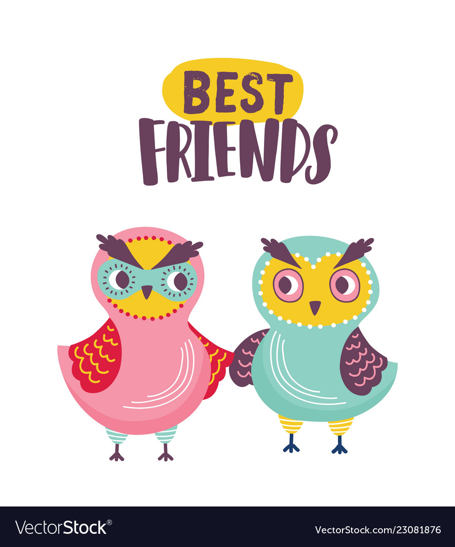 Pair of adorable owls and best friends inscription