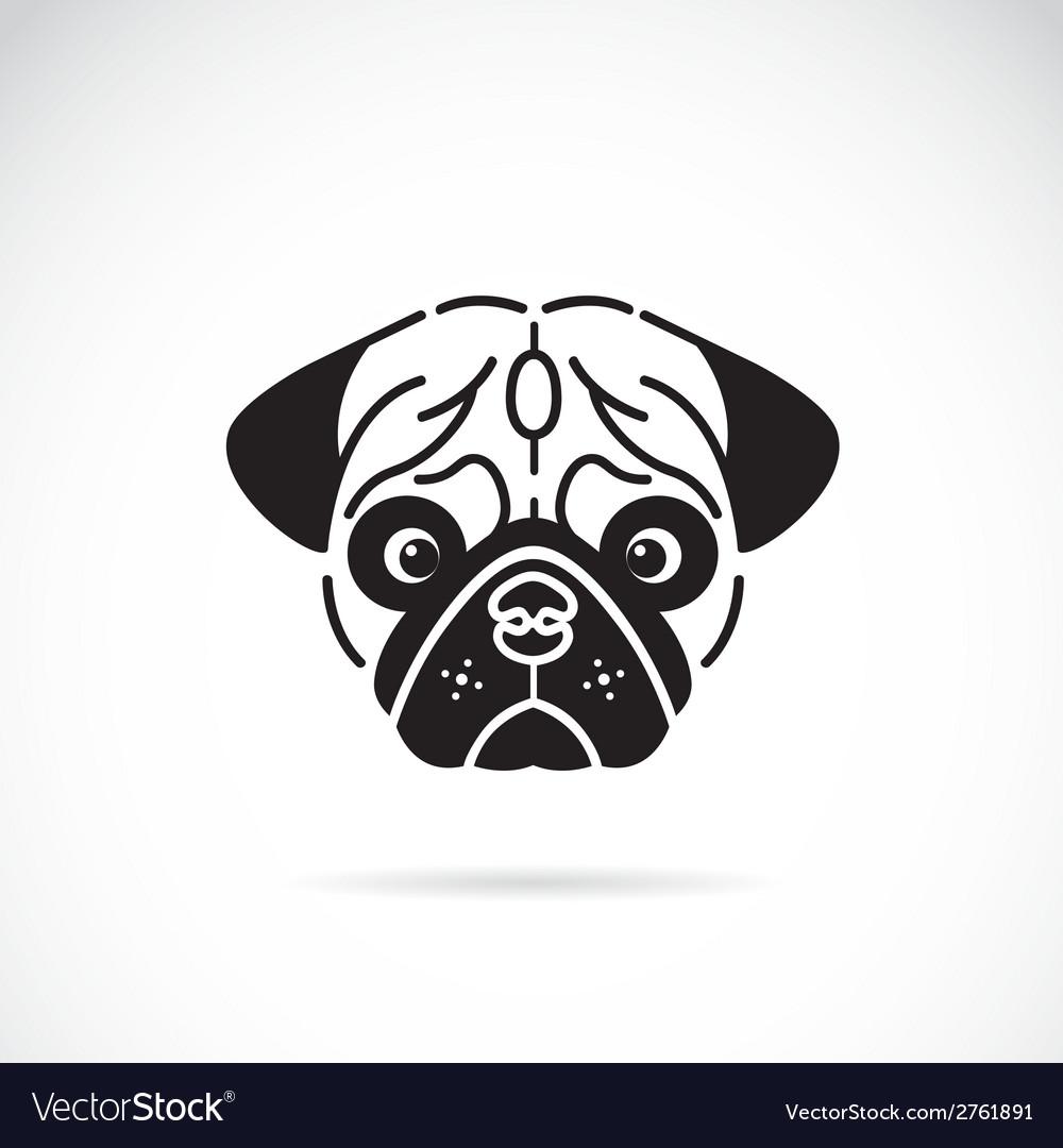 Pugs face