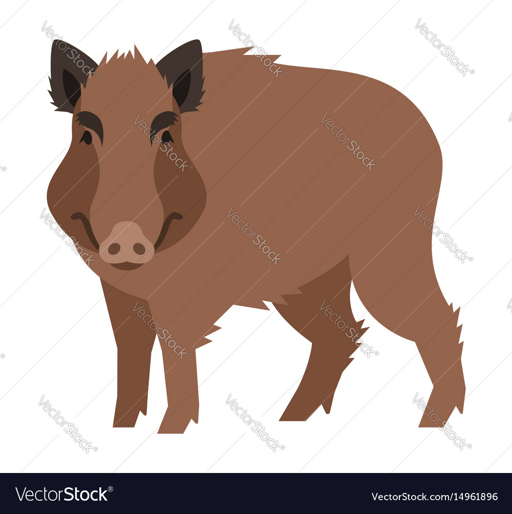 Cute smiling wild boar cartoon