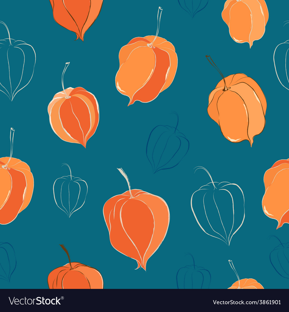 Seamless pattern with physalis