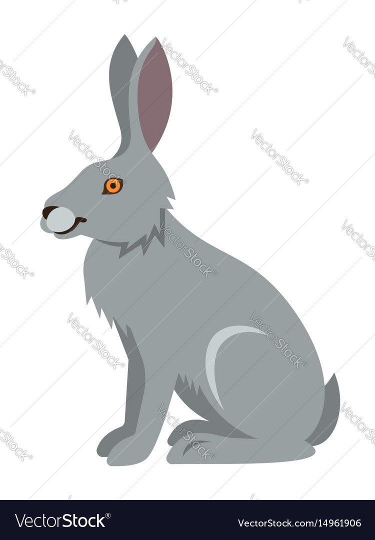 Cute smiling wild hare cartoon