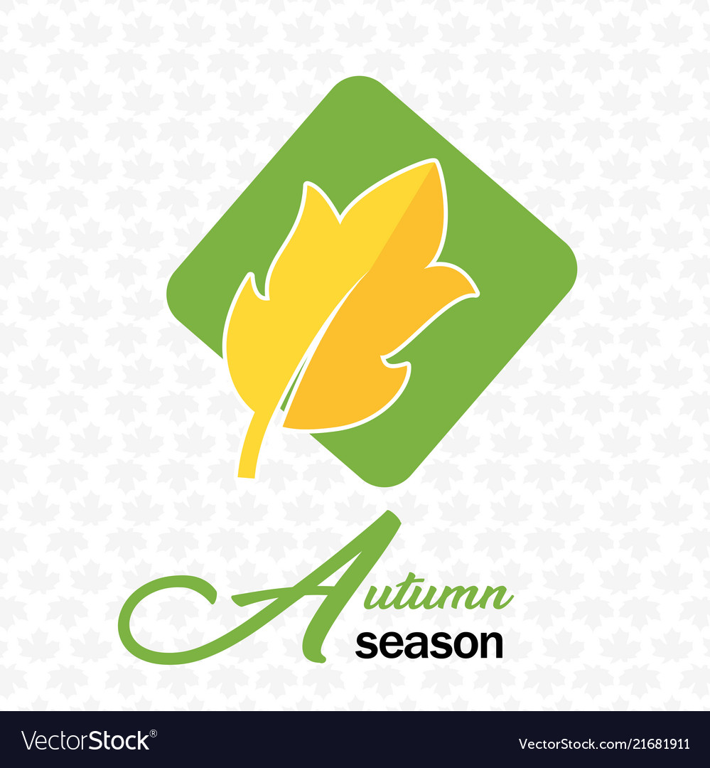 Autumn season autumn leave maple background