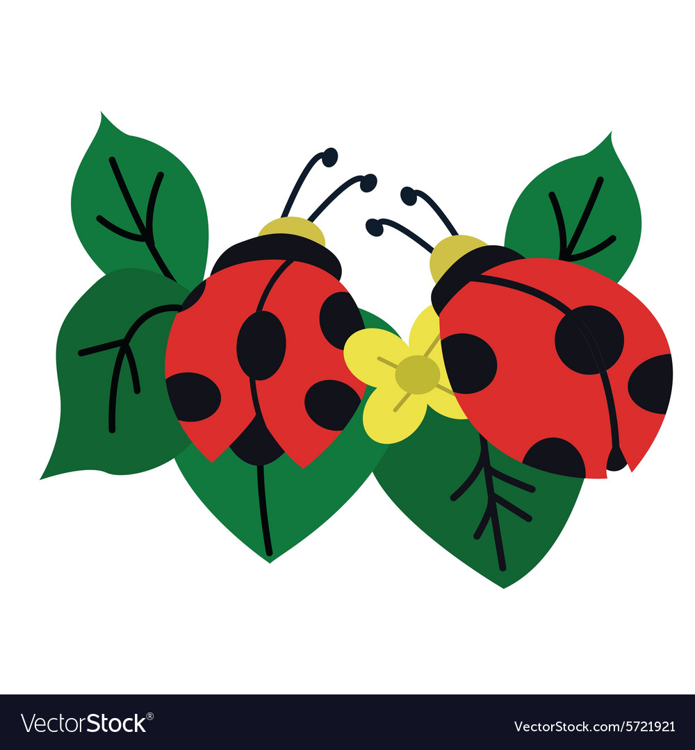 Ladybug Garden With Leafs And Flower Vector Image