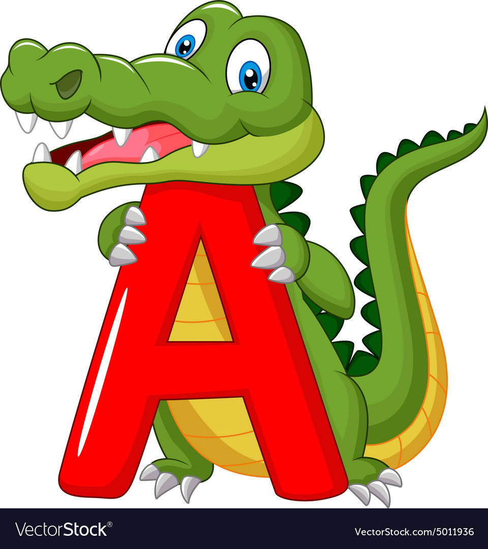 Cartoon alligator with alphabet A Royalty Free Vector Image - photo#9