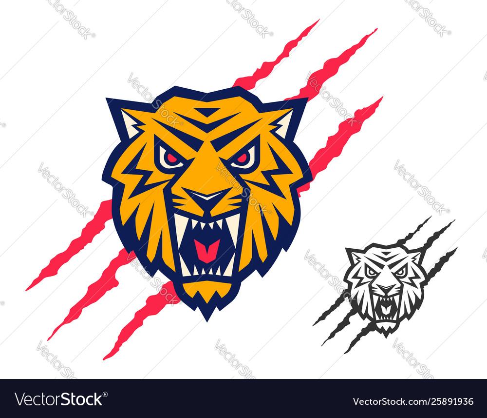 Head a tiger