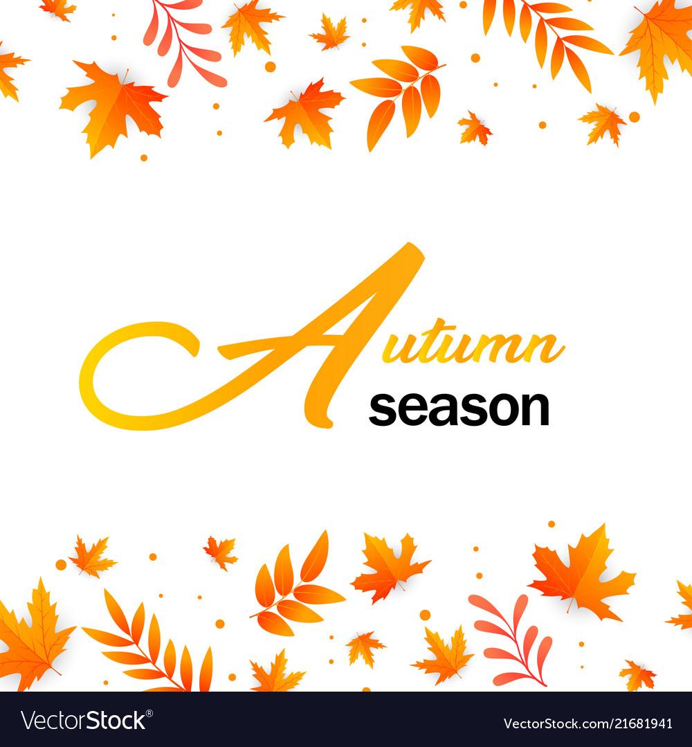 Autumn season autumn leaves background imag