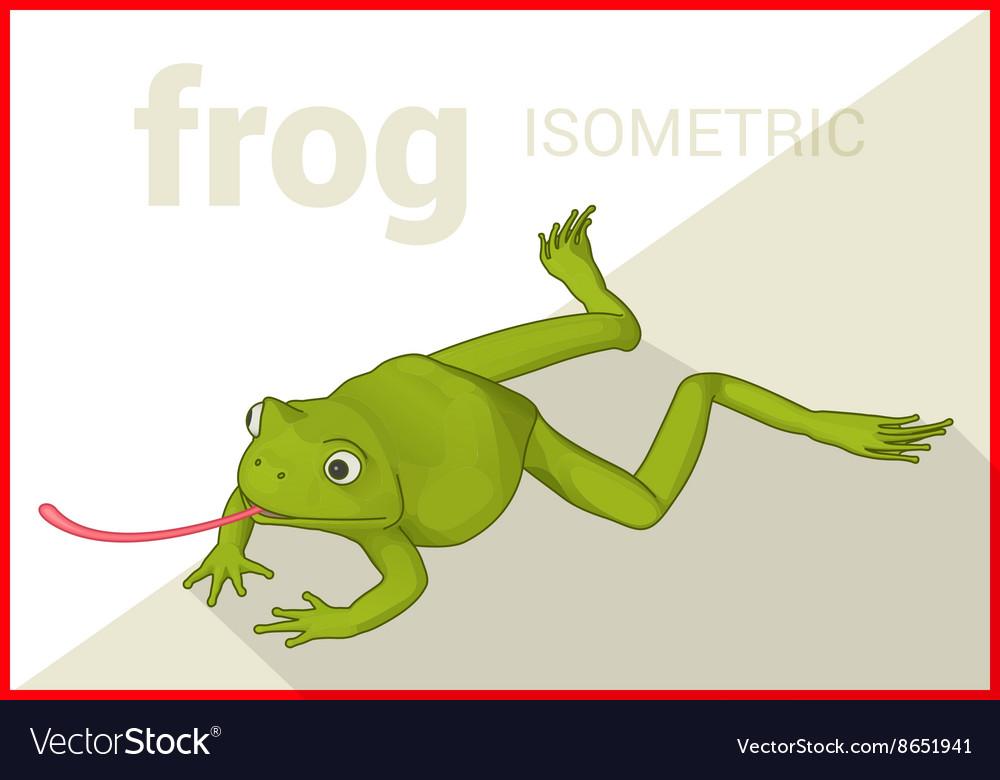 Frog isometric flat 3d