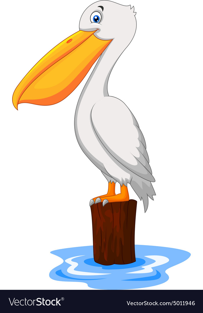 cartoon pelican in the bay royalty free vector image