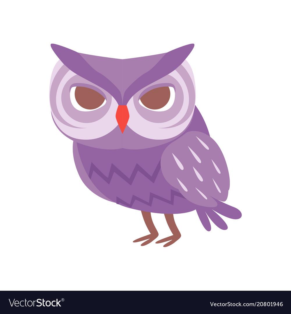 Cute cartoon purple owlet bird character
