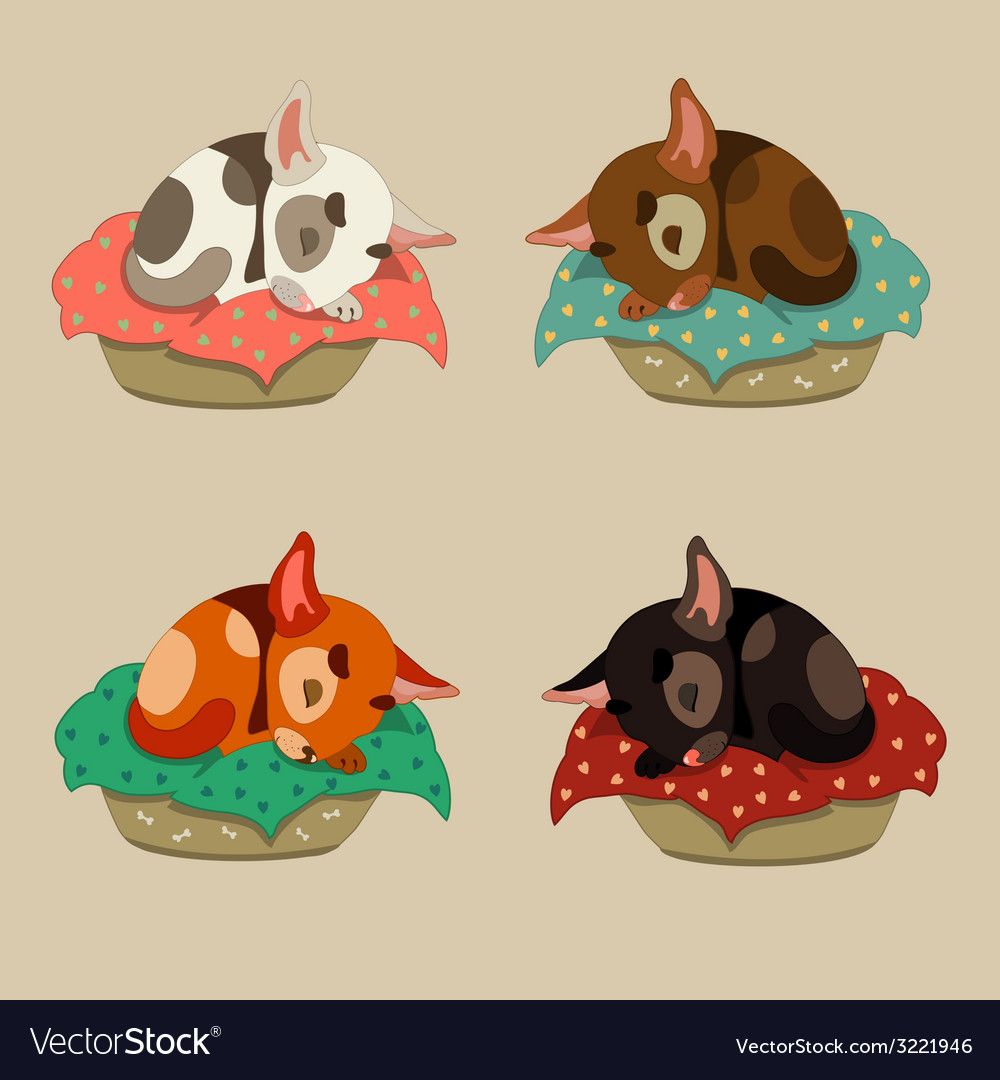 Cute puppy sleeping vector image