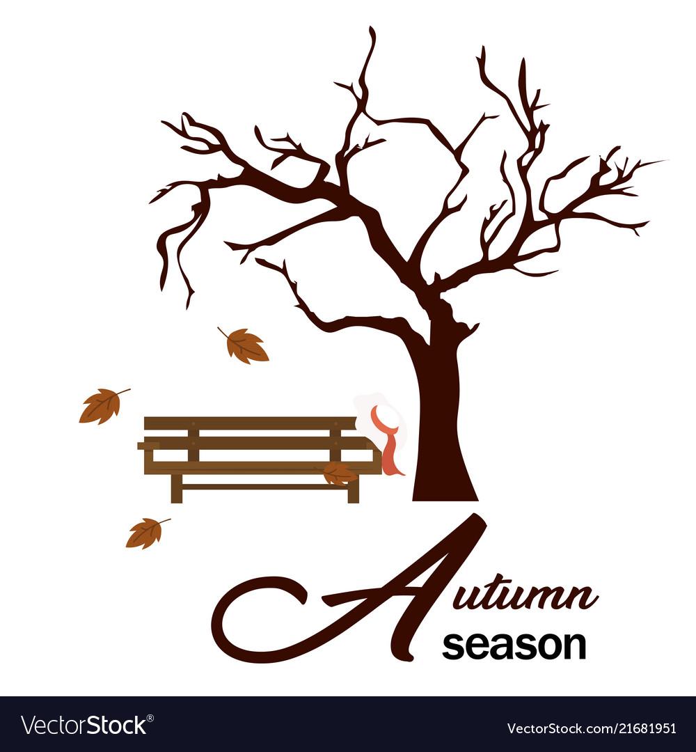 Autumn season garden wood chair and tree backgroun