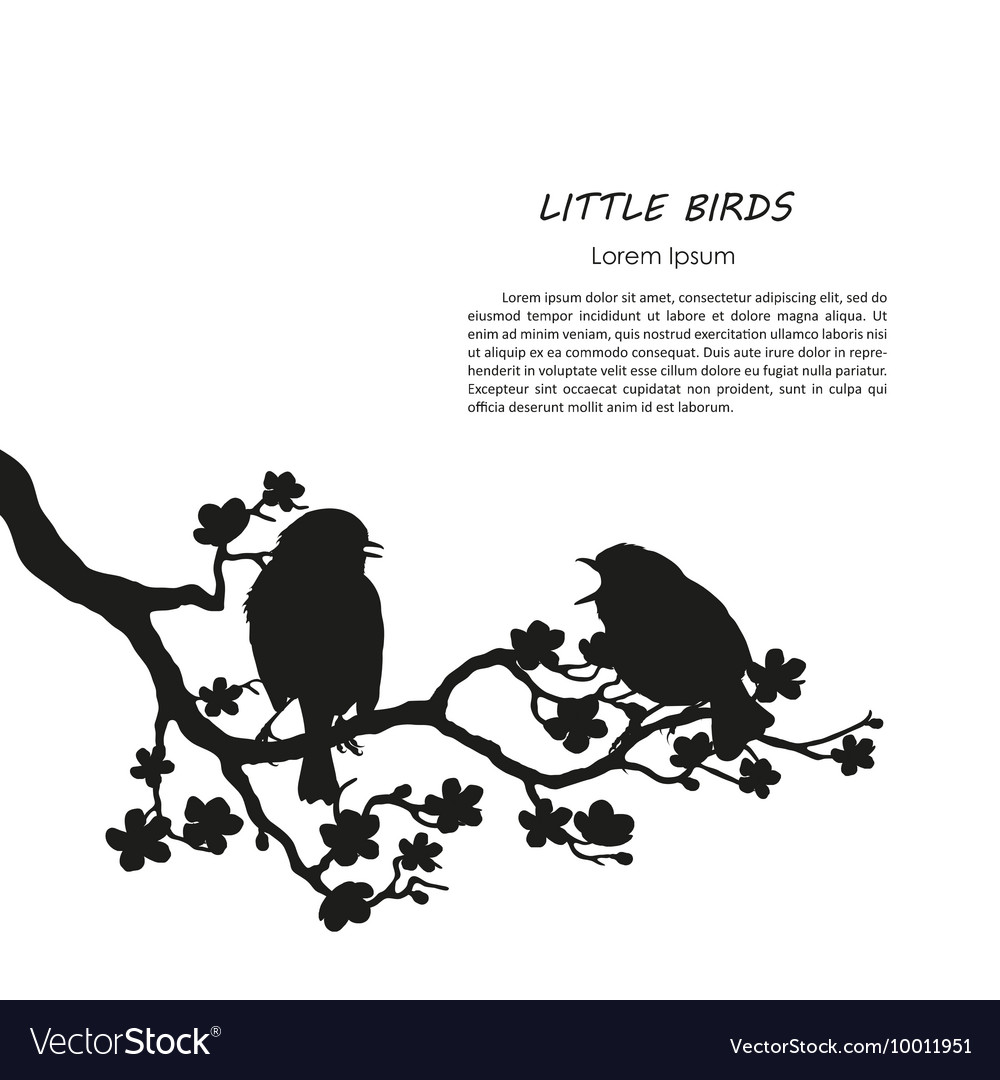 Silhouette of two birds sitting on a branch