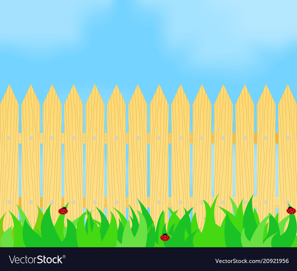 Grass in front of the fence