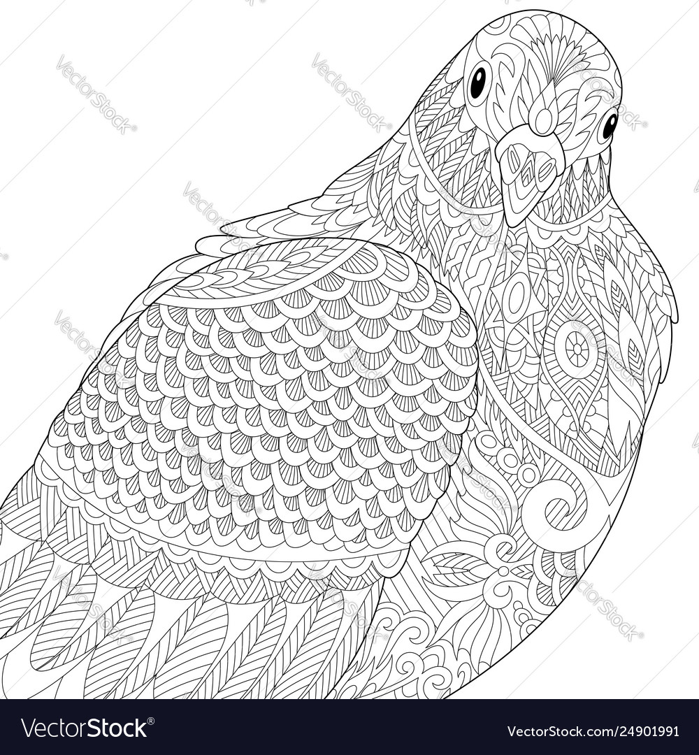 Dove Pigeon Adult Coloring Page Royalty Free Vector Image