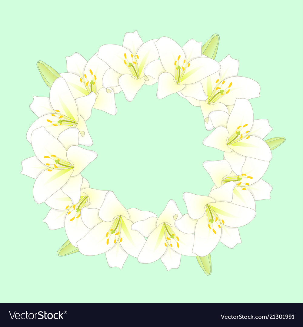 White lily flower wreath on green mint background