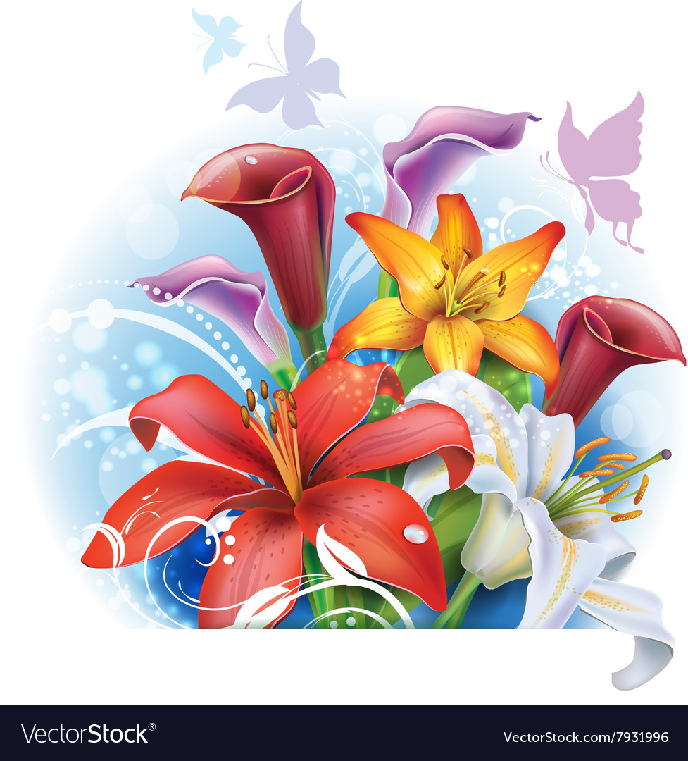 Bouquet Of Color Lilies And Calla Royalty Free Vector Image