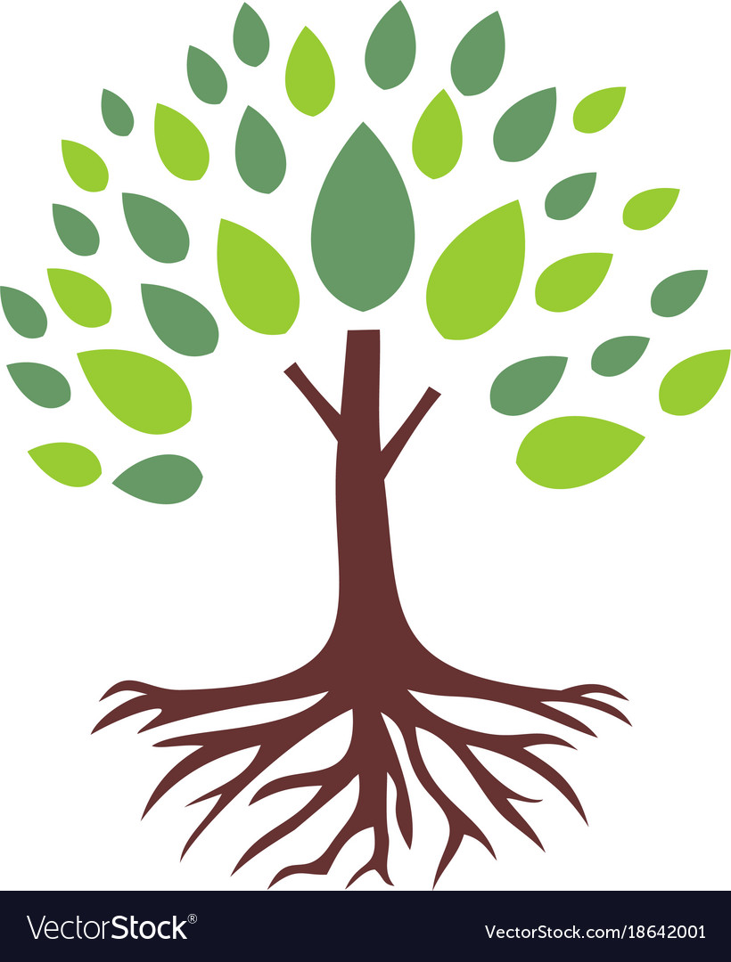 tree root logo royalty free vector image vectorstock rh vectorstock com tree with deep roots vector tree with roots vector image