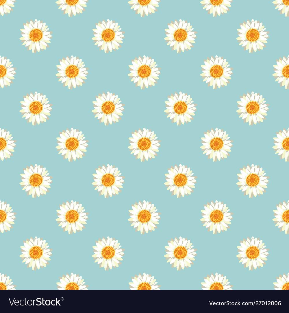 Chamomile seamless pattern daisies on blue