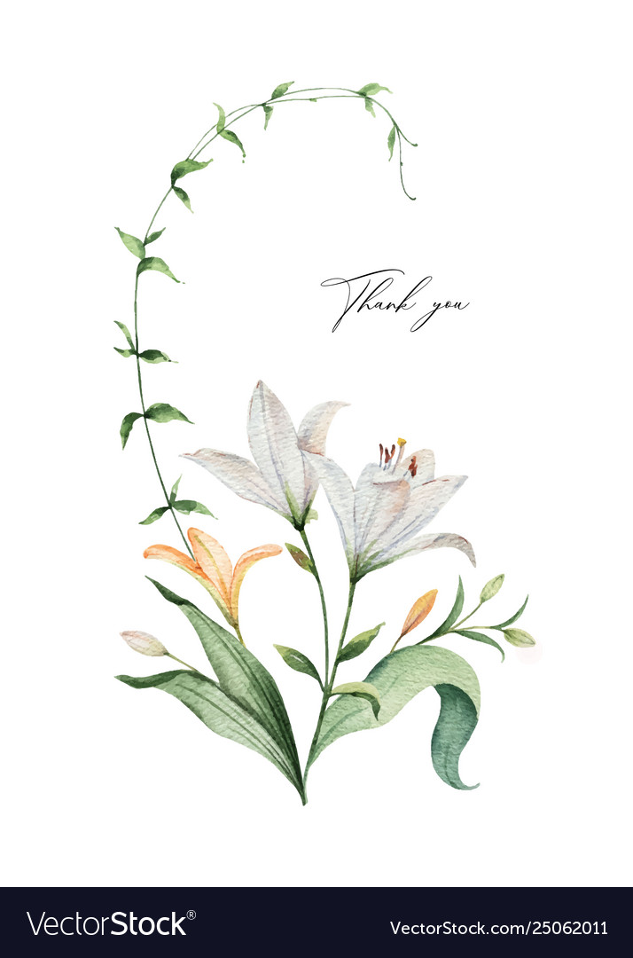 Watercolor arrangement lily flowers and
