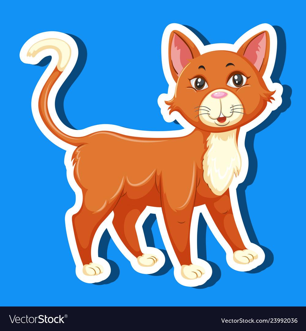 A simple cat sticker