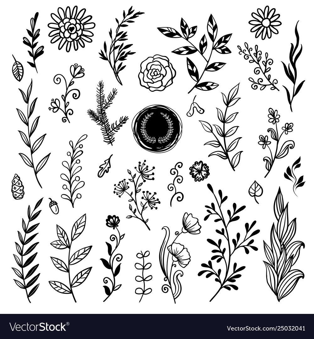 Beautiful plants set hand drawn