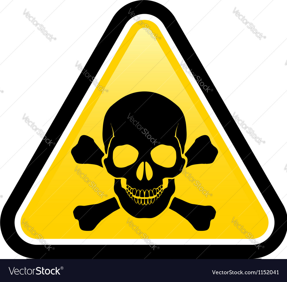 Skull danger signs vector image